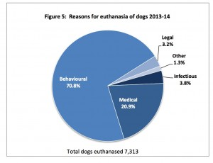 RSPCA Euthanasis Reasons