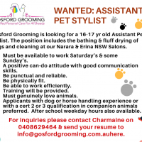 WANTED: ASSISTANT  PET STYLIST